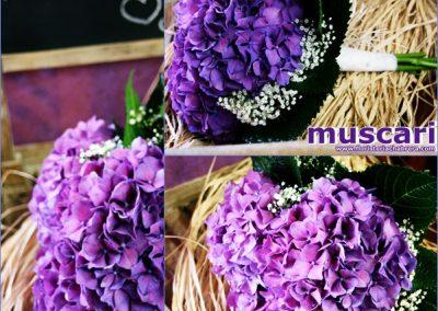 Bouquet de hortensia