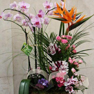 Cesta con mezcla de planta y flor cortada
