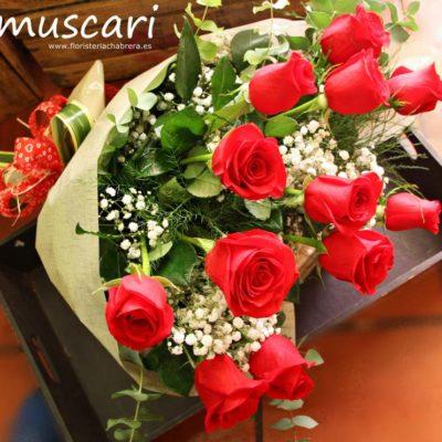 Ramo de una docena de rosas rojas