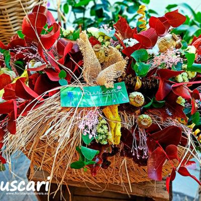 Capazo silvestre flor preservada